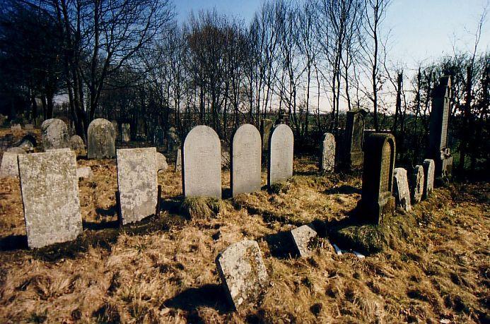 http://www.alemannia-judaica.de/images/Images%2031/Wallerstein%20Friedhof%20102.jpg