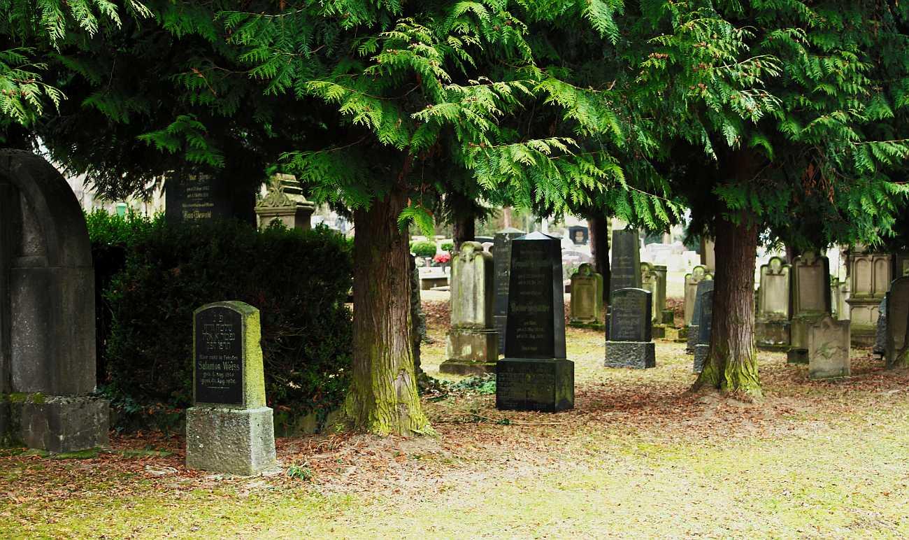 http://www.alemannia-judaica.de/images/Images%20391/Woerrstadt%20Friedhof%200163.jpg