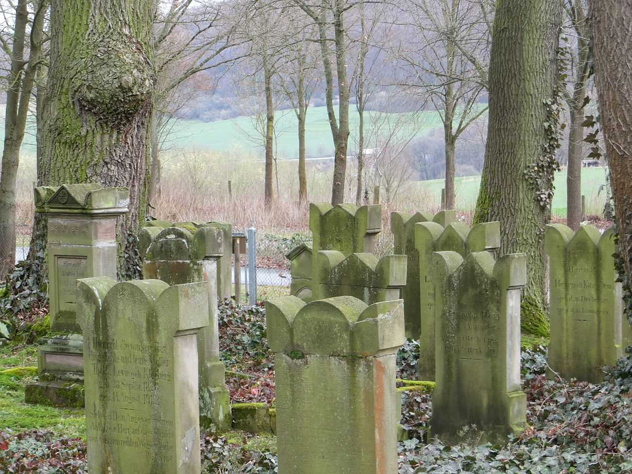 http://www.alemannia-judaica.de/images/Images%20402/Rhoden%20Friedhof%20IMG_8431.jpg