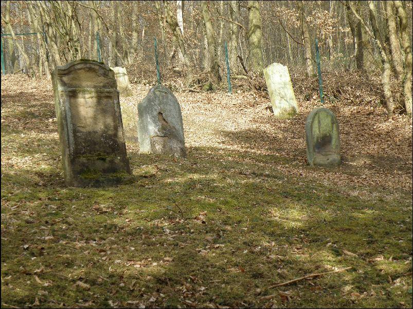 http://www.alemannia-judaica.de/images/Images%20435/Muensterappel%20Friedhof%20122.JPG