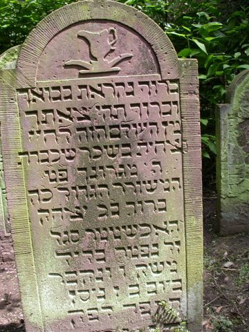 http://www.alemannia-judaica.de/images/Images%2044/Heidelberg%20Friedhof%20Kl%20108.jpg