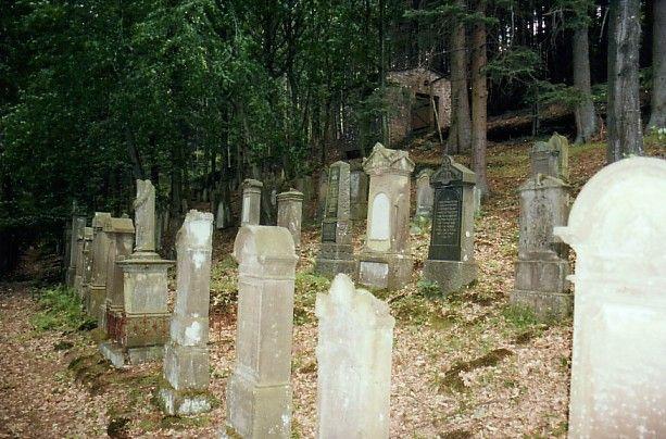 http://www.alemannia-judaica.de/images/Images%2044/Hirschhorn%20Friedhof%20100.jpg
