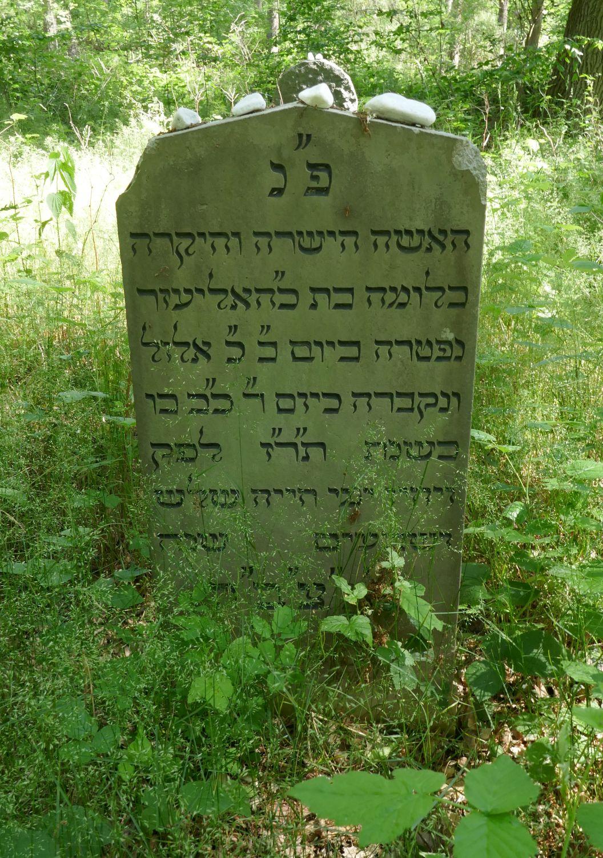 http://www.alemannia-judaica.de/images/Images%20445/Neukalen%20Friedhof%20P1040677.jpg