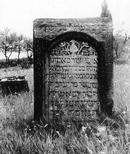 http://www.alemannia-judaica.de/images/Images%2048/Schnaittach%20Friedhof%20h101.jpg
