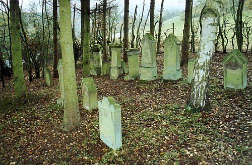 http://www.alemannia-judaica.de/images/Images%2049/Marienthal%20Friedhof%20051.jpg