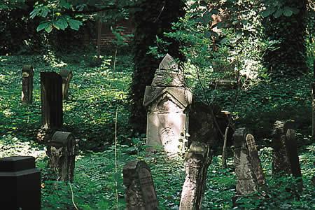 http://www.alemannia-judaica.de/images/Images%2050/Dessau%20Friedhof%20010.jpg