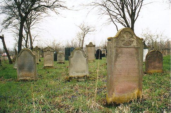 http://www.alemannia-judaica.de/images/Images%2056/Hillesheim%20Friedhof%20200.jpg