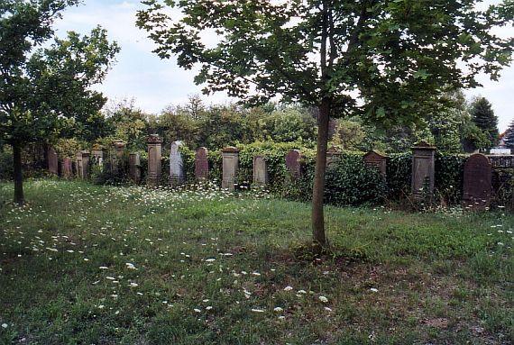 http://www.alemannia-judaica.de/images/Images%2059/Eppelsheim%20Friedhof%20106.jpg