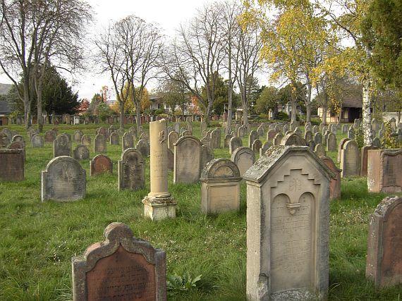 http://www.alemannia-judaica.de/images/Images%2062/Wachenheim%20Friedhof%20112.jpg