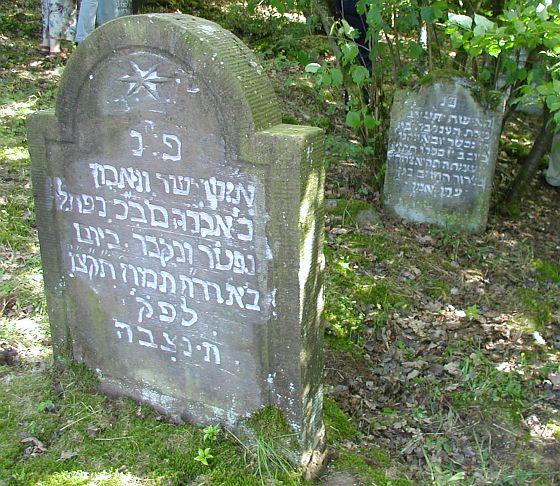 http://www.alemannia-judaica.de/images/Images%20Hessen02/Kestrich%20Friedhof%20121.jpg