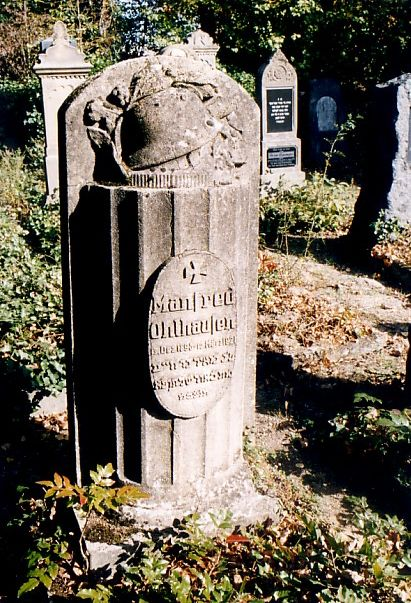 https://www.alemannia-judaica.de/images/Images%2031/Schwetzingen%20Friedhof%20160.jpg