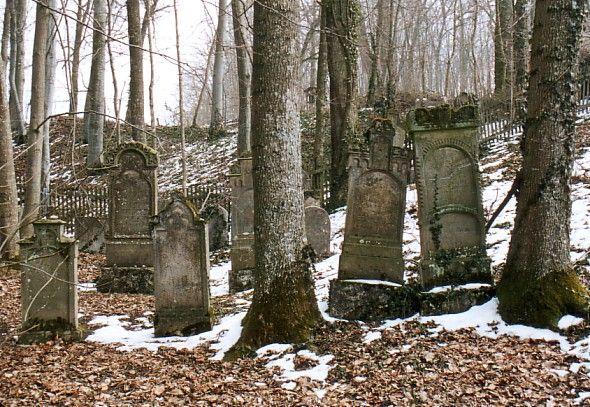 https://www.alemannia-judaica.de/images/Images%2038/Steinhart%20Friedhof%20105.jpg